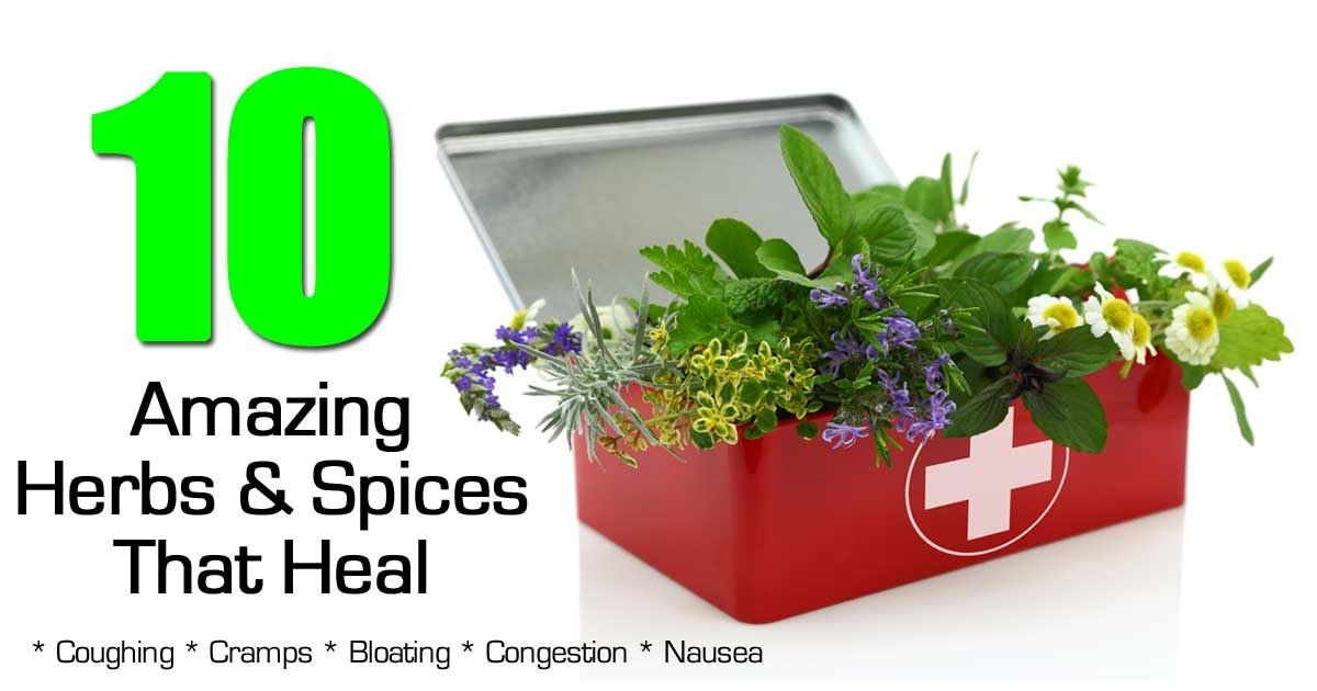 10 Amazing Herbs And Spices That Heal