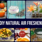21 DIY Natural Air Fresheners