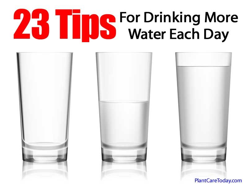 23 Tips For Drinking More Water Each Day