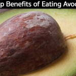 Top Benefits of Eating Avocado Seeds