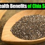 What Are The Health Benefits Of Chia Seeds?