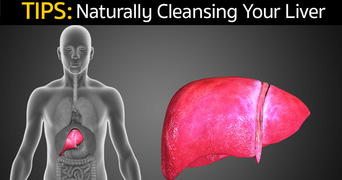 Tips For Naturally Cleansing Your Liver