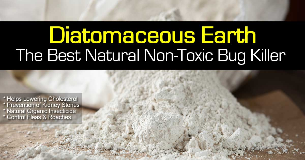 diatomaceous-earth-natural-103114