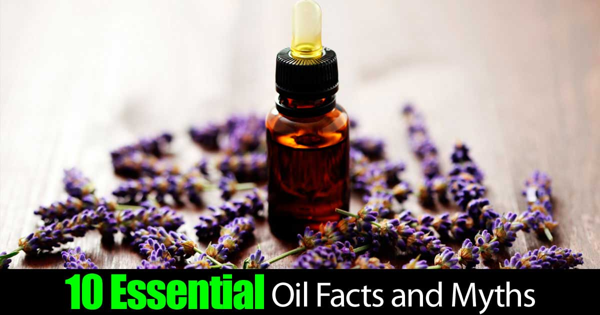 essential-oil-myths-facts-22820151006