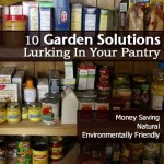 10 Garden Solutions Lurking In Your Pantry
