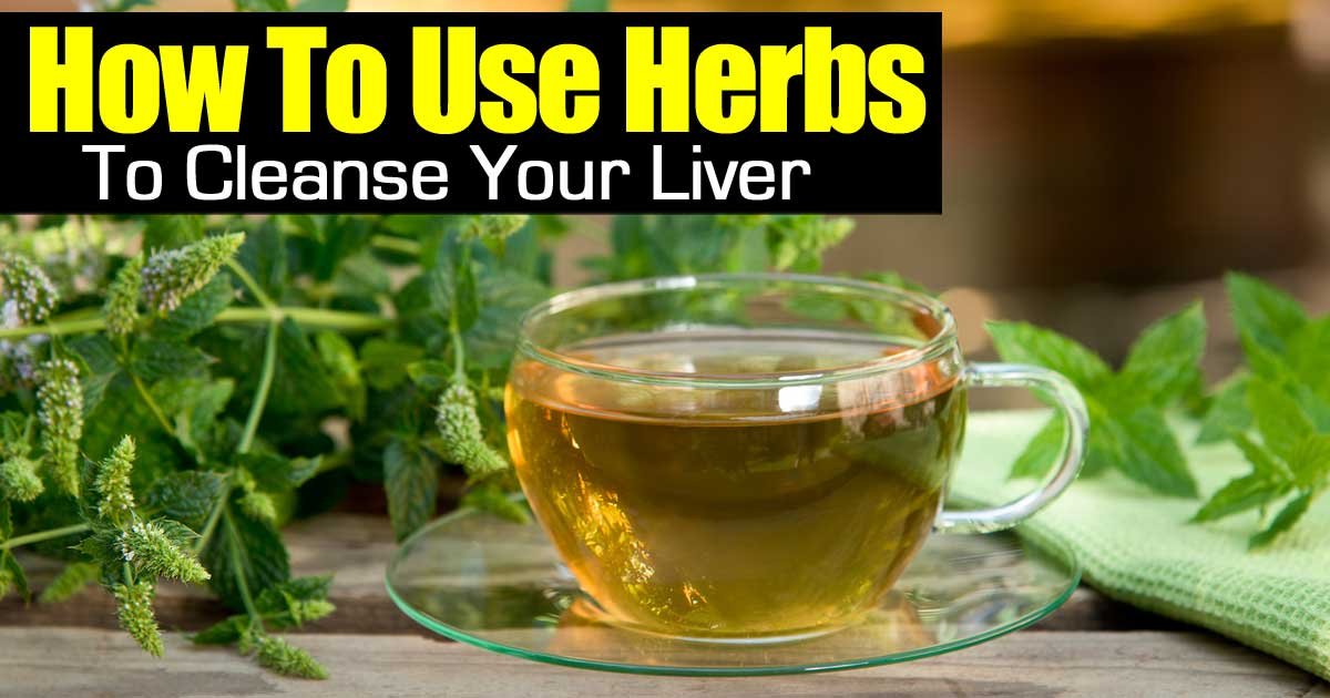 herbs-cleanse-liver-113014