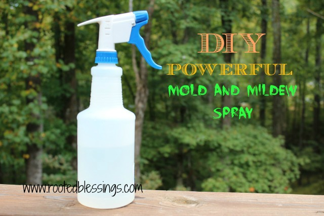 How Make Non Toxic Mold And Mildew Spray