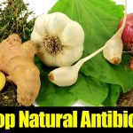 10 Top Natural Antibiotics