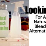 Looking For A Natural Bleach Alternative?