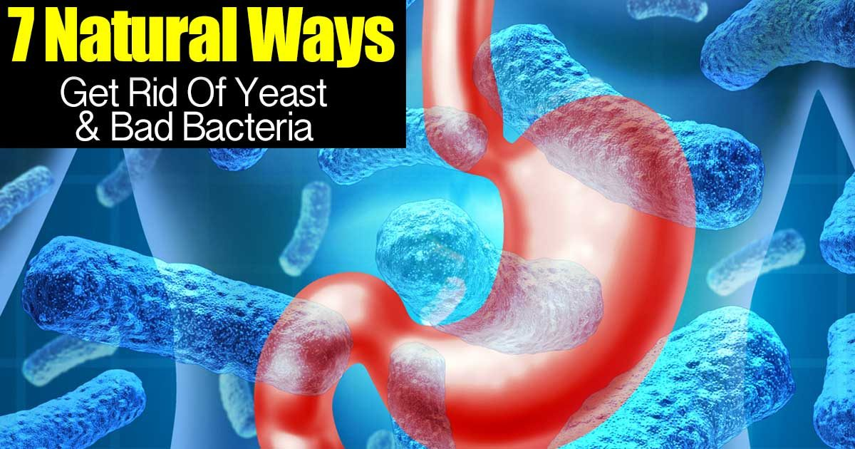7 Natural Ways To Get Rid Of Yeast And Bad Bacteria