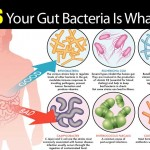 7 Signals Your Gut Bacteria Is Out Of Whack