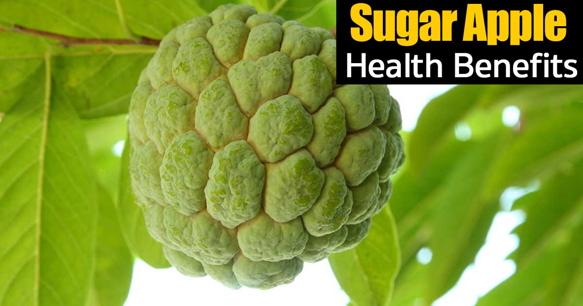 sugar-apples-health-benefits-04302016