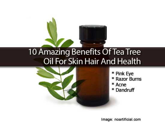 Tea Tree Essential Oil And It's Extraordinary Uses And ...